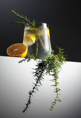 Cocktail gin tonic with lemon, juniper branch, and ice.