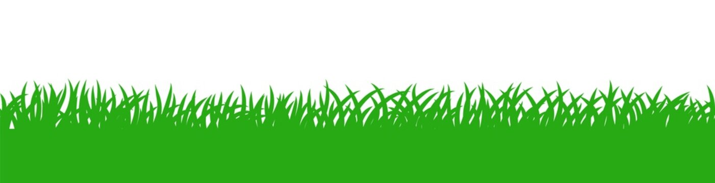 Green grass silhouette pattern, additional conceptual background element for your design. Vector green field illustration in flat style.