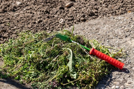 A pile of weeds and a tool for weeding the earth