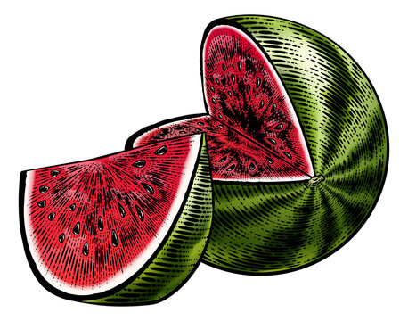 Watermelon Vintage Woodcut Engraved Style Drawing