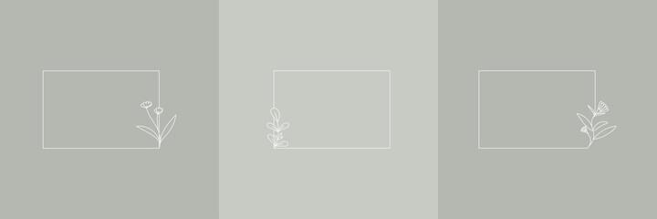 Fototapeta Set Hand Drawn Organic grass, Leaves and flower with square frame, Floral elements, Botanical illustration, Decorative Leaf, Vector Illustration for graphic design, wedding, invitation, logo, cosmetic obraz