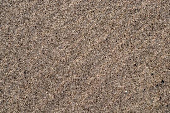 Background texture of sandy beach. Sea coast