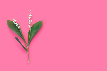 Spring flowers of lily of the valley on a pastel pink background. Season background idea.