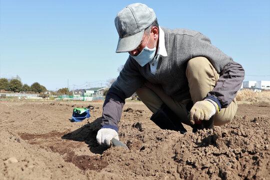 農作業 シニア男性