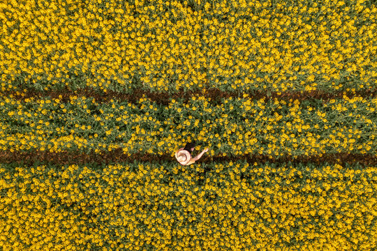 Aerial view of female farmer with tablet computer in rapeseed field using innovative technology