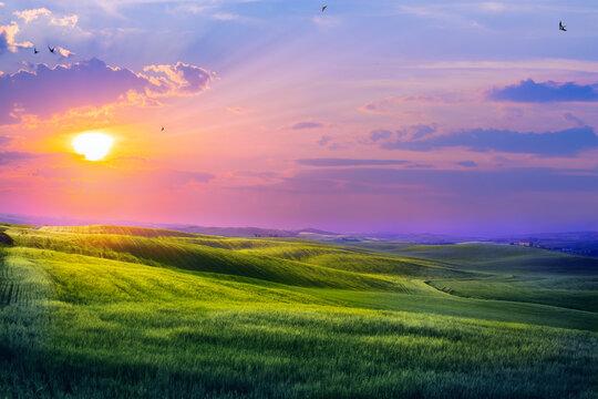 art sunset over countryside landscape. farmland field