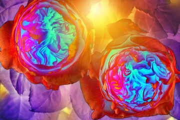 Pop art neon roses in yellow light, modern interpretation of flowers.