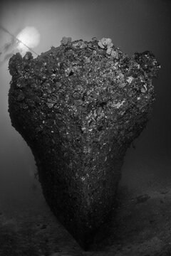 The wreck of a boat rests on the sea floor in the Solomon Islands.