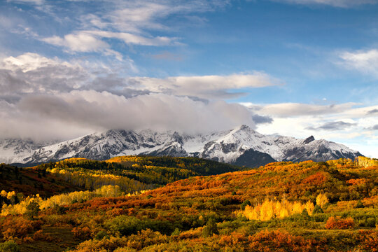 The rising sun lights up the changing leaves of aspen and scrub brush below the Mt. Sneffels range near Ridgway, Colorado