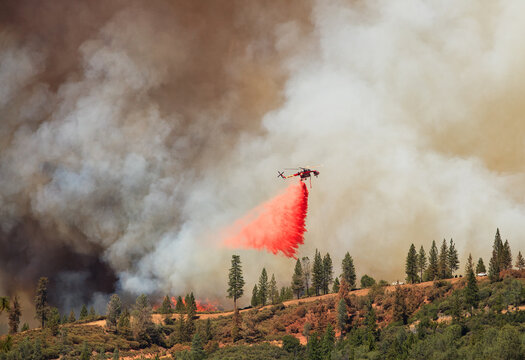 Sky Crane dropping fire retardant on line of Rime Fire, Groveland, California