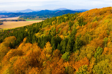 View from drone of undulating forest landscape in sunny autumn day..