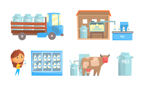 Milk Production with Cow Milking and Merchandise Shelf with Dairy Product Vector Set