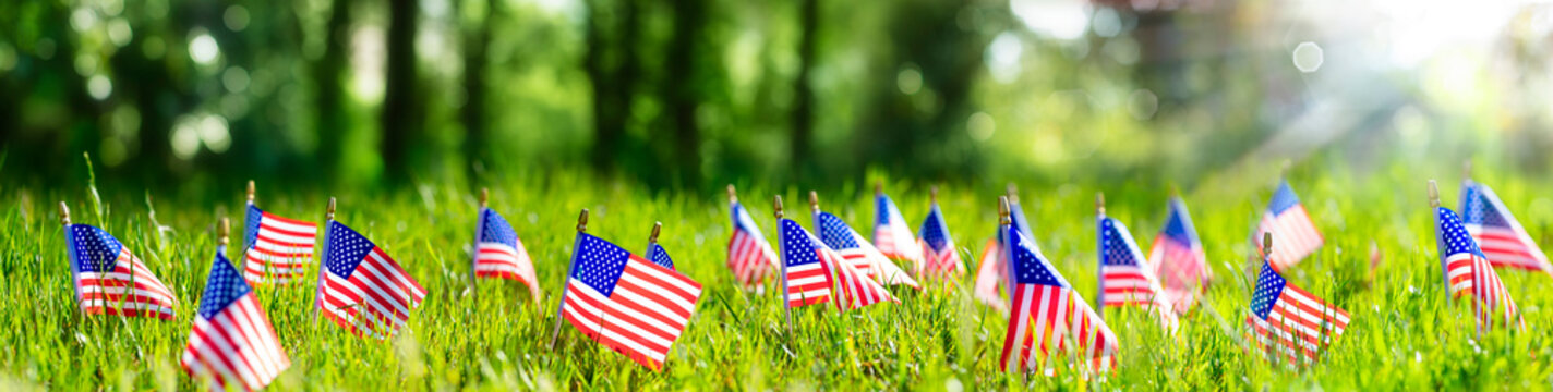American Flags In Grass - Defocused Abstract Memorial Day background