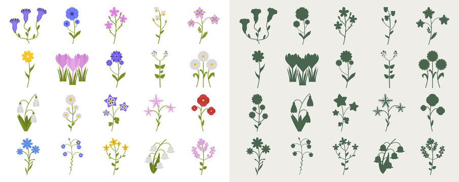 A set of wildflowers in a flat style and silhouettes. Vector illustration of flowers.