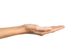 Fototapeta Empty woman hand holding something obraz