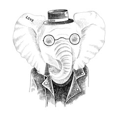 Hand drawn portrait of elephant with accessories
