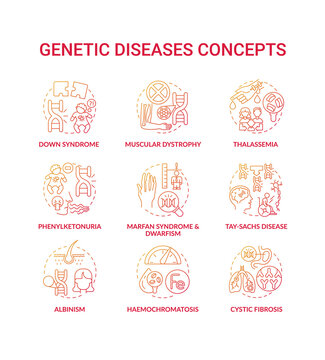 Genetic disease red gradient concept icons set. Marfan syndrome, dwarfism. Tay sach disease. Hereditary illness idea thin line RGB color illustrations. Vector isolated outline drawings