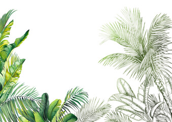 Fototapeta Green tropical leaves scenery frame. Watercolor and graphic illustration.