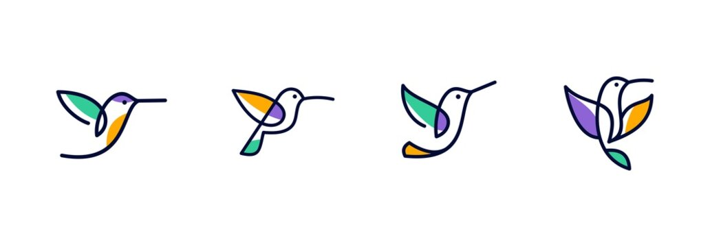 vector line art of abstract colorful hummingbird, colibri wall art design, minimal bird line logo icon illustration isolated on white background