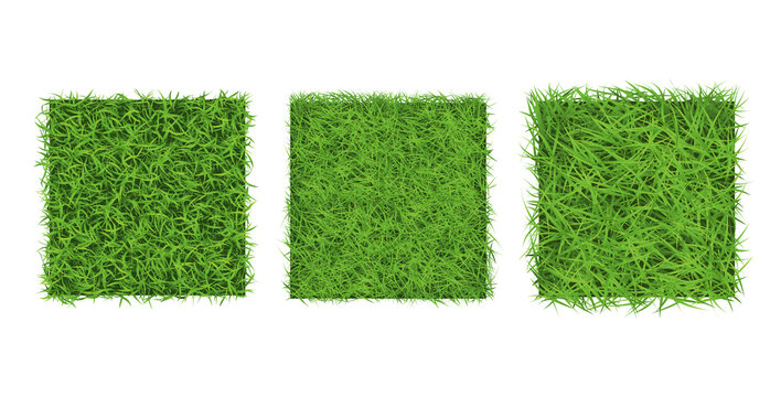 Green grass border on white background, top view. Background square texture of ground surface with green grass.