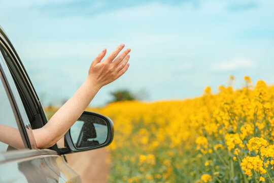 Woman enjoying ride in a car through countryside landscape in summer, hand reaching out the window