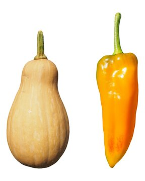 pepper and pumpkin vegetables isolated over white