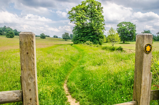 Gateway to grass meadow, Surrey, England