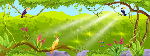 Jungle forest vector background, nature tropical wood landscape, liana, paradise trees, exotic birds, stone. Summer Amazon environment illustration, palm silhouette. Green thicket jungle background