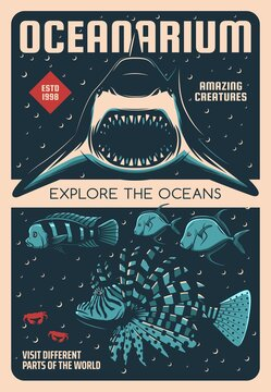 Oceanarium shark and exotic fishes retro vector poster. Ocean and tropical sea animals exhibition vintage banner. Shark with open maw, lionfish or zebrafish, blue dolphin cichlid and lookdown fish