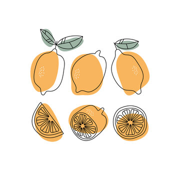 Hand drawn lemon, whole, half and slice. For home decor or cards.