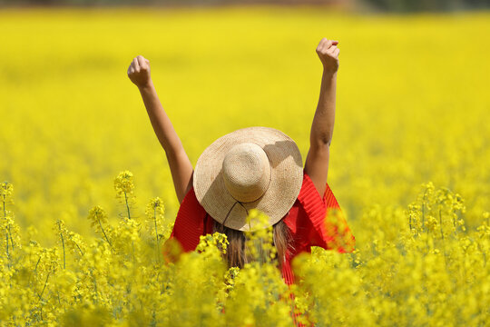 Excited woman with pamela raising arms in a yellow field