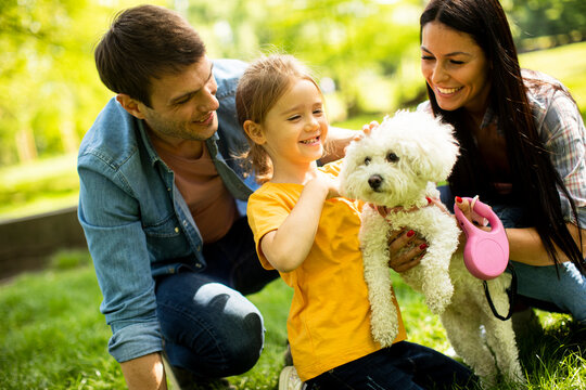 Beautiful happy family is having fun with bichon dog outdoors
