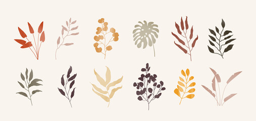 Set of trendy plants with different textures illustration in natural colors - fototapety na wymiar
