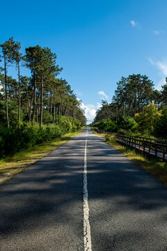 Asphalt road and wooden walkway