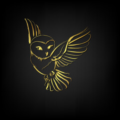 Barn owl flying over black background