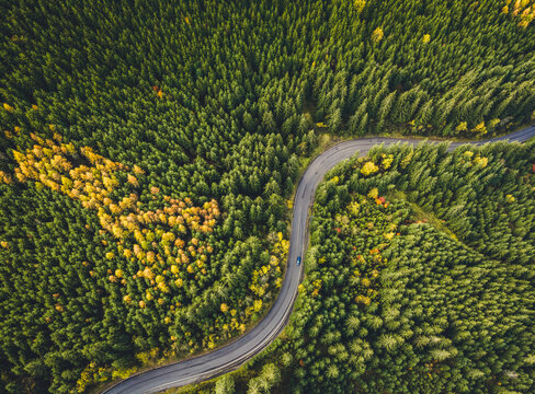 Aerial top view of misty forest with road in the mountains. Drone photography. Rainforest ecosystem and healthy environment concept.