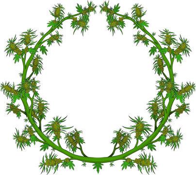marijuana ring, green, weed, vector design