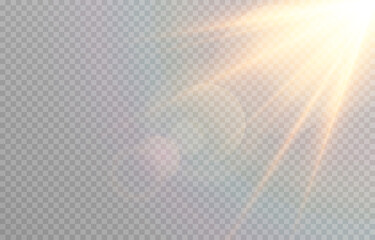 Fototapeta Vector golden light with glare. Sun, sun rays, dawn, glare from the sun png. Gold flare png, glare from flare png. obraz