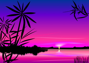 Bright Colorful Sunset Lake Foreground Silhouettes Plants