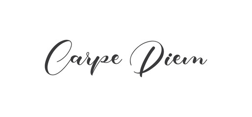 Carpe Diem lettering text, hand drawn typographic style phrase. Motivational quote handwritten design.