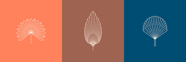 Set of Dried Palm Leaves in a Trendy Minimal Linear Style. Vector Tropical Leaf Boho Emblem. Floral Illustration