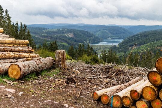 Die Ohra-Talsperre im Thüringer Wald