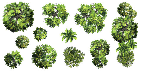 Fototapeta Collection of abstract vector green tree top view isolated on white background  for landscape plan and architecture layout drawing, elements for environment and garden, green grass vector illustration obraz
