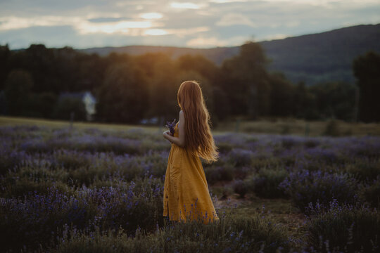 Side view of gentle female with flowers in hand standing in blooming lavender field and enjoying nature while looking away