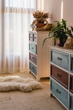 Potted plants and decorative skull on chest of drawers against curtain and fluffy rug in house