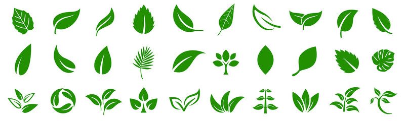 Fototapeta Leaf icons set ecology nature element, green leafs, environment and nature eco sign. Leaves on white background – vector obraz