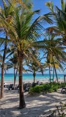 Fototapeta Mexico Akumal beach  obraz
