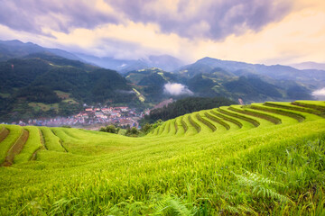 Selective focus Vietnam terraced rice fields, green rice fields The sky has cloud many colours, see the city below.