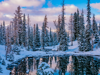 Amazing winter in the mountains. Frozen lake. Winter forest covered by snow. Blue lake trail North Cascades region. Wall mural
