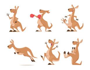 Obraz Kangaroo. Tropical wild animal kangaroo from australia exact vector cartoon funny characters isolated - fototapety do salonu